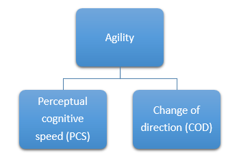 Agility definition